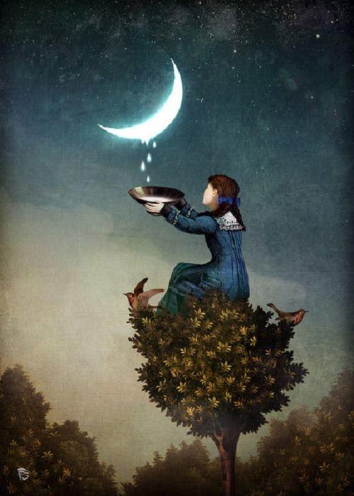 MOONSHINE by Christian Schloe