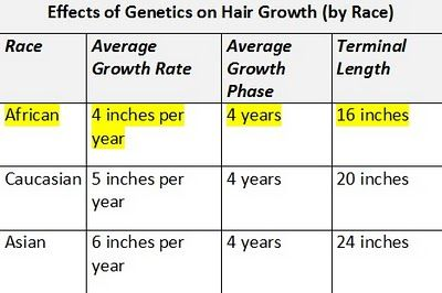 Is Long Hair Genetic? [Part 1] - The Feisty House