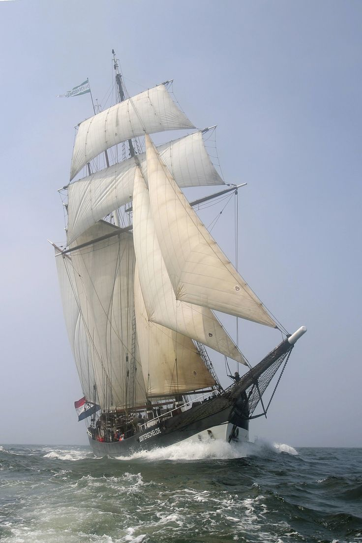 "The schooner ""Oosterschelde"". Netherlands"