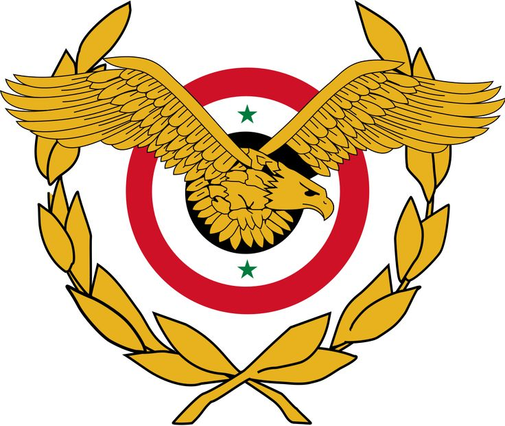 The Syrian Arab Air Force is the air force branch of the Syrian Armed Forces established in 1948. The Syrian Arab Airforce does not have the ability to carry out operations at night.  Wikipedia.