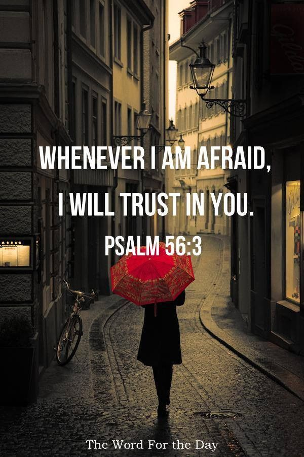 """Psalm 56:3-4 says: """"When I am afraid, I will trust in You. In God, whose word I praise, in God I trust; I will not be afraid."""" Here, David talks about making a conscious decision to put his trust in God when he is fearful. He also reveals the basis..."""