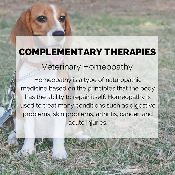 Cancer Treatment and Prevention with Homeopathy