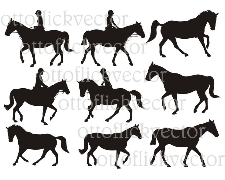 HORSE RIDERS Silhouettes Vector CLIPART, Equestrian eps ai, cdr, png, jpg, girl rider, animal farm icon, cuttingable file by ottoflickvector on Etsy