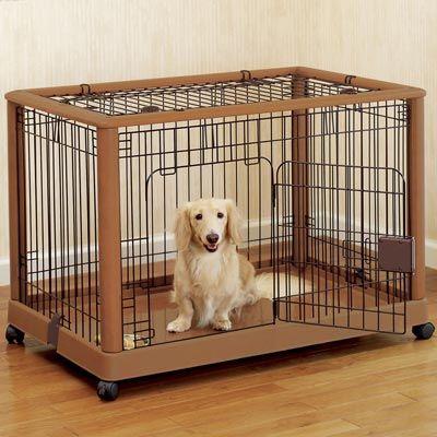 Choix de la cage/caisse de transport