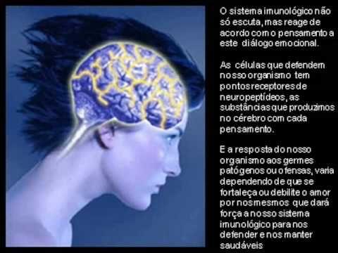 Neuropeptideos - YouTube