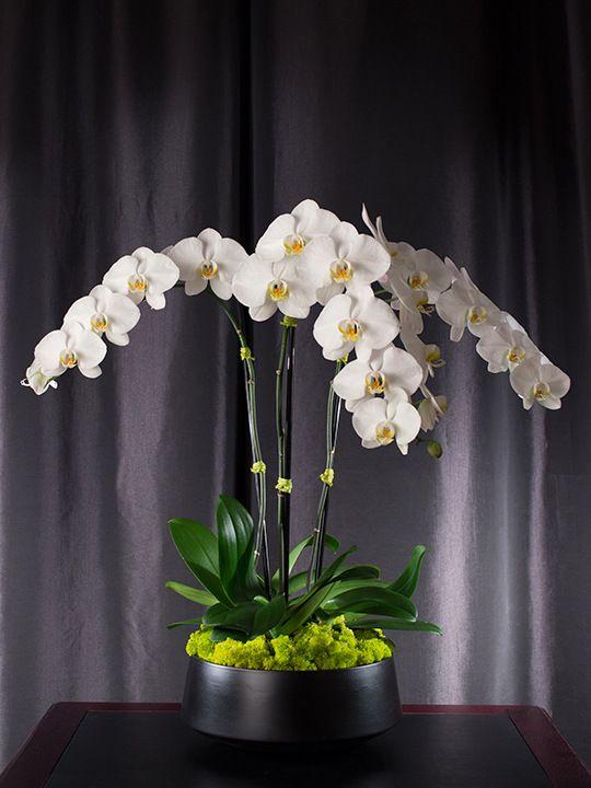 diy faux orchid arrangement blog - Google Search