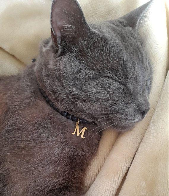 Cat collar tag personalized cat collar id cat initial collar cat name tag collar for custom cat tag custom collar for cat tag cat id pet id