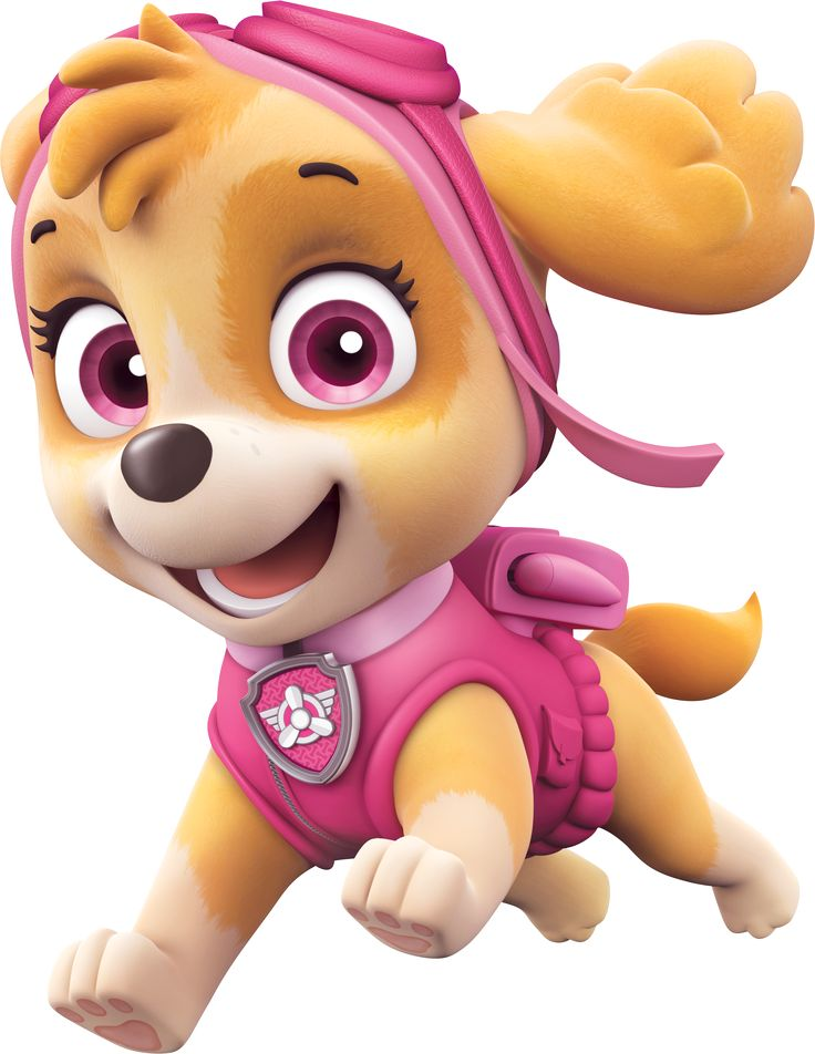 vignette1.wikia.nocookie.net paw-patrol images 7 76 PAW_Patrol_Skye_Running.png revision latest?cb=20160110212451