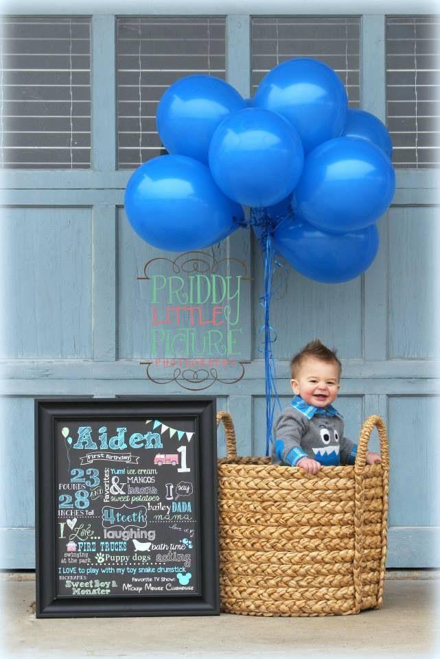 Boy one year birthday photo