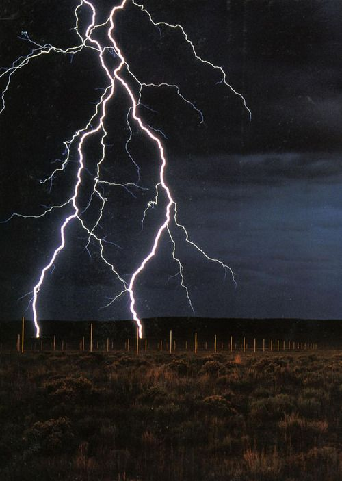 """Walter De Maria's """"The Lightning Field."""" Permanent installation in New Mexico - 1974."""