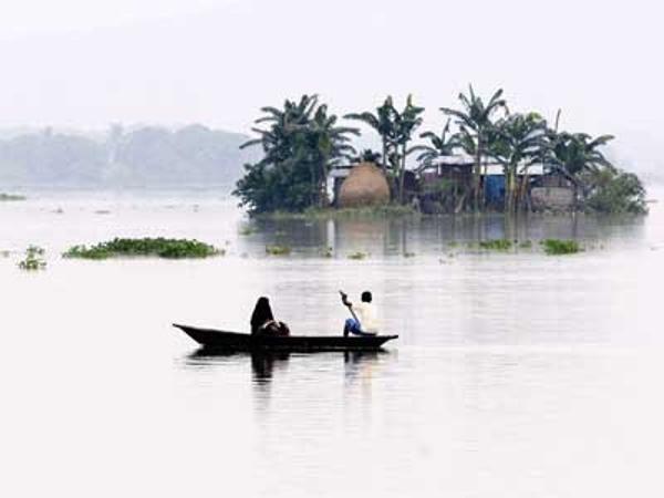 Monsoon surge expands Kharif crop area by 82% - The Economic Times