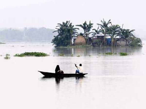 Monsoon surge expands Kharif crop area by 82% - The Economic Times