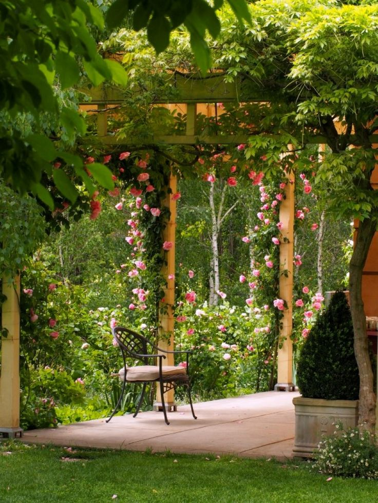 Want roses like this? We picked up some tips from rosarian Walter Duncan on a recent visit to his lovely Heritage Garden in South Australia's Clare Valley.    ...