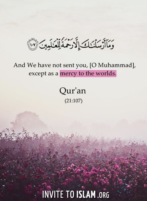 invitetoislam:  And We have not sent you, [O Muhammad], except as a mercy to the worlds. - Surat Al-'Anbya' [verse 107] -