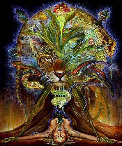https://ceudaestrelaguia.files.wordpress.com/2009/12/ayahuasca-vision-18.jpg