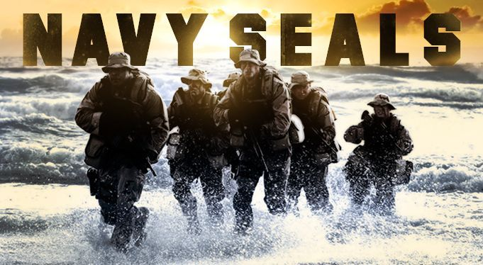Honour to you Navy seals!!
