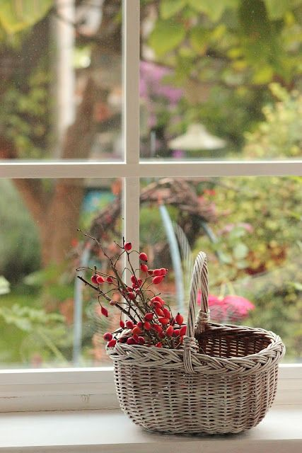 A pleasant afternoon retreat. #window #basket #relax