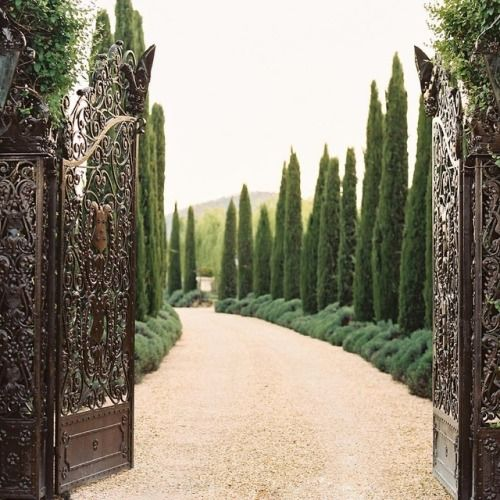 Tuscan House Style With Front Walkway And Italian Cypress: 정원, 정원수, 꽃 나무