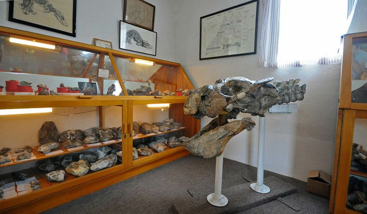 Trymore Cottage is located in the Cradock and Graaff-Reinet area of the Eastern Cape in South Africa. The farm is renowned for its remarkable private #fossil collection, which is of global significance. africatravelresource.com