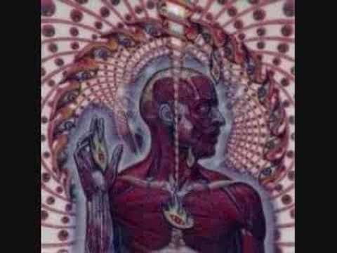 """Tool """"the patient"""" - track still gives me the chills ten years later."""