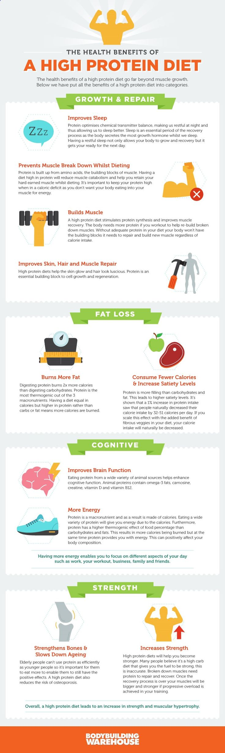 Why Your Body Could Use a Healthy Protein Boost Infographic