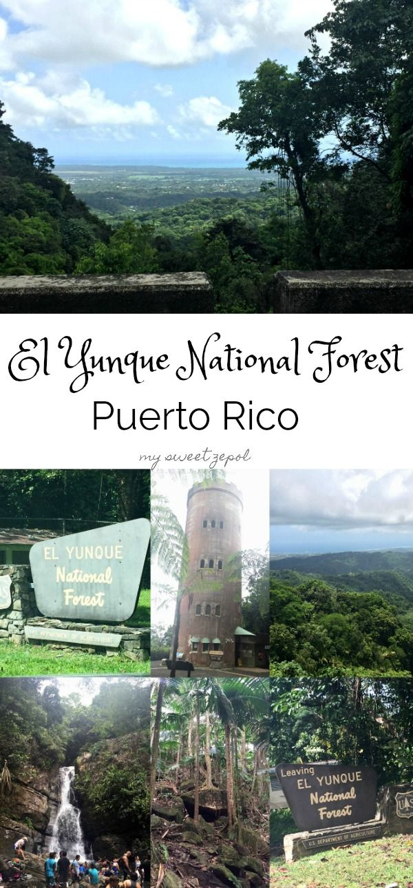 We all know what Puerto Rico and the surrounding islands went through with Hurricane Irma and Hurricane Maria. El Yunque National Park received a nasty hit and it's currently going through a restoration process. This post is an homage of the beauty found in Puerto Rico and as a way to give the community support. Puerto Rico will get back up stronger than ever and it will renew its beauty. #PuertoRicoStrong