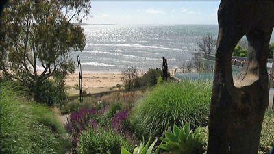 http://www.abc.net.au/gardening/images/2420_john_large.jpg