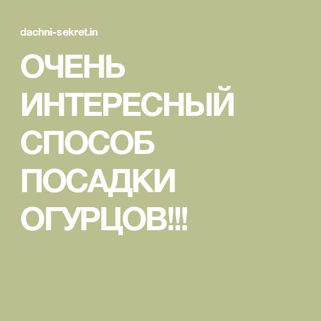 ОЧЕНЬ ИНТЕРЕСНЫЙ СПОСОБ ПОСАДКИ ОГУРЦОВ!!!
