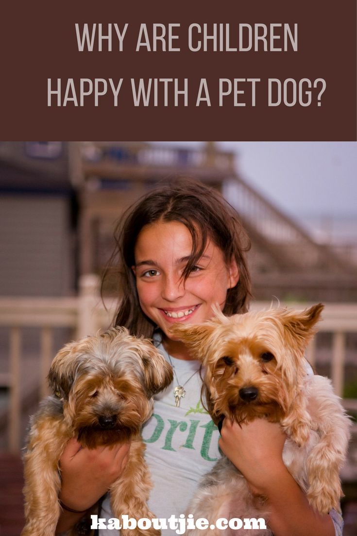 Let's face it, dogs make the most amazing companions and not just for you, for your kids too. Kids and dogs have an amazing relationship. Here are the reasons why dogs make children so happy and will have such a positive effect on your child's life.    #guestpost #childrenanddogs #petdogs #dogsandkids #dogs #doglover #lovedogs #ilovemydog #dogoftheday #pets #pup #lovepuppies #puppies #puppylove #doggy #doglife #doglovers #dogslife #doglove