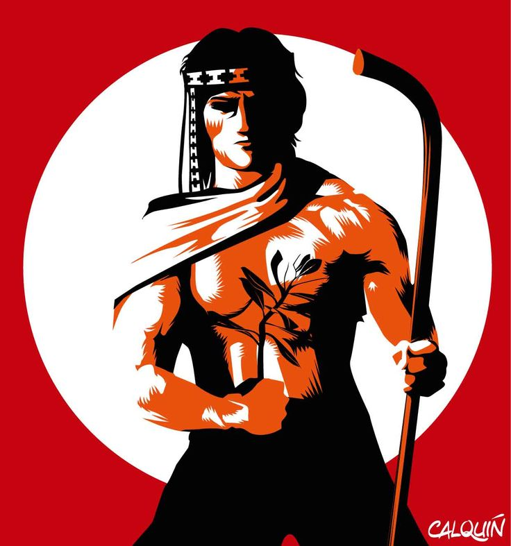 guerrero mapuche