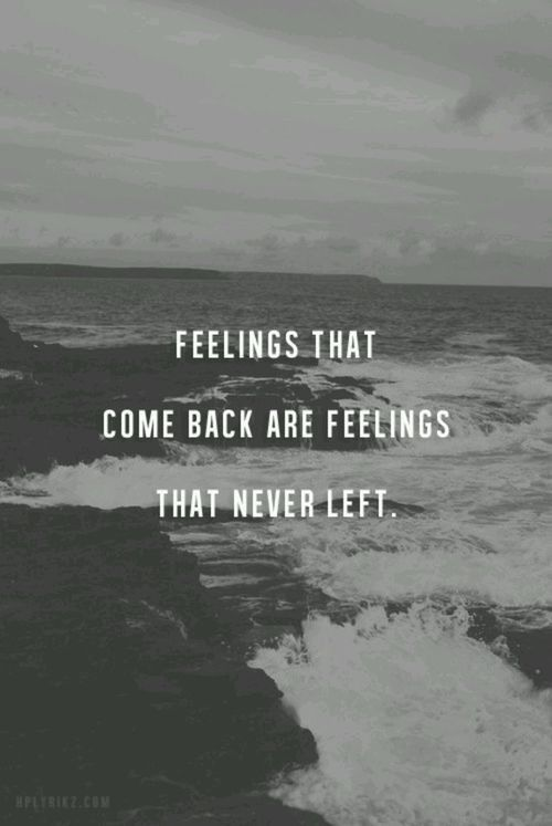 Feeling That Come Back Are Feelings That Never Left