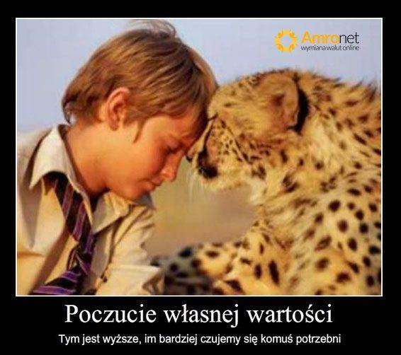Amronet.pl. I love days