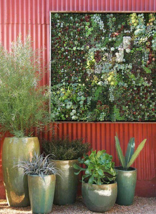Vertical Succulent Garden, D.I.Y. Panel   $79.