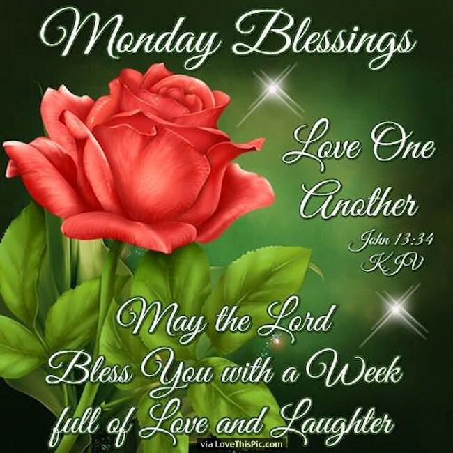 Monday Blessings Love One Another / Thank You A. That's Lovely, I Will do my best! can't make any promises though! x
