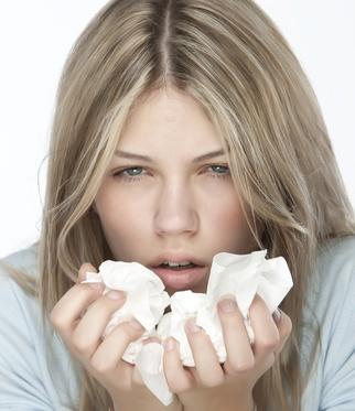 Equinácea el mejor remedio para Catarros y Gripe