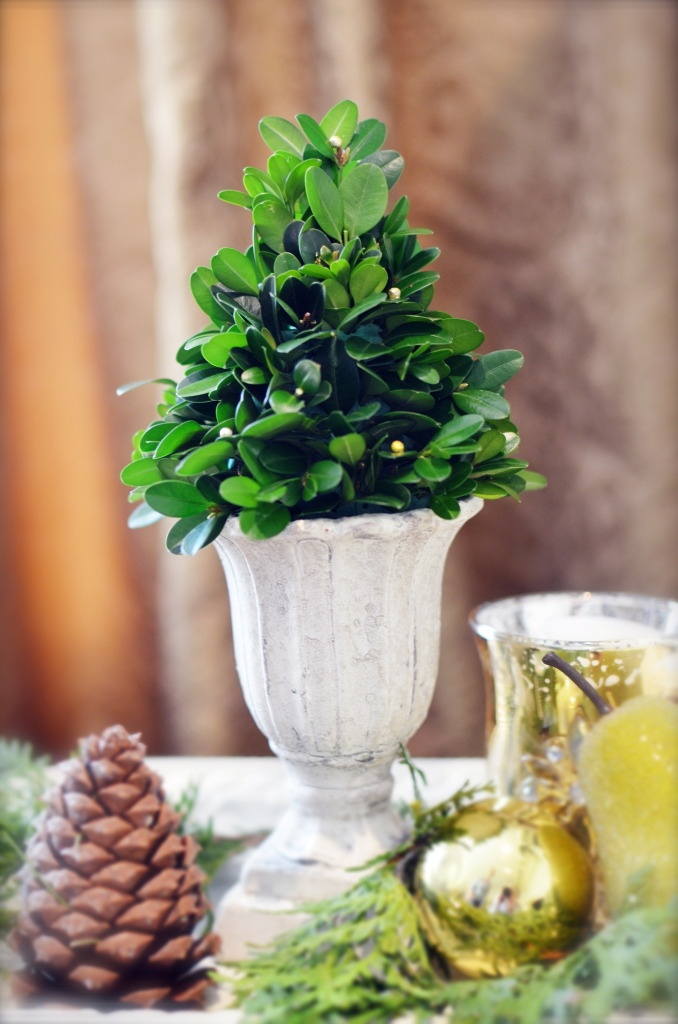 Images about christmas centerpieces on pinterest