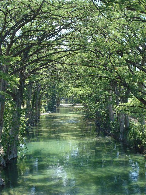 Medina River, Texas this river in Castroville tx