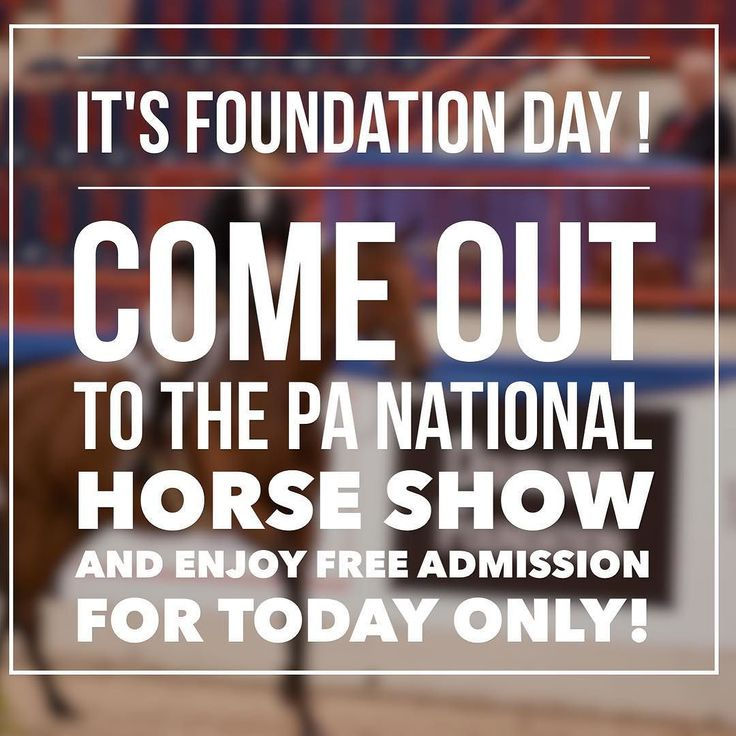 The PA National Horse Show Foundation supports: Beyond Wishes Therapeutic Riding Program Buffalo Therapeutic Riding Center Capital Area Therapeutic Riding Chasing Rainbows Days End Horse Rescue Inc Equi-Librium Hope Springs Equestrian Therapy Inc Horses and Horizons Therapeutic Riding Ivy Hill Foundation Inc Leg Up Farm Mane Stream Quest Therapeutic Services Inc. The Retreat at Beckleysville Riding for the Handicapped of Western PA Sebastian Riding Associates Seven Star Horse and Family…