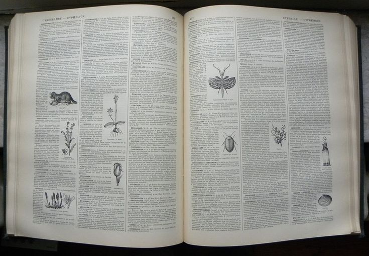 A dictionary is a collection of words in one or more specific languages, often alphabetically , with usage of information, definitions, etymologies, phonetics, pronunciations, translation, and other information;[1] or a book of words in one language with their equivalents in another, also known as a lexicon.[1] It is a lexicographical product designed for utility and function, curated with selected data, presented in a way that shows inter-relationship among the data.[2]
