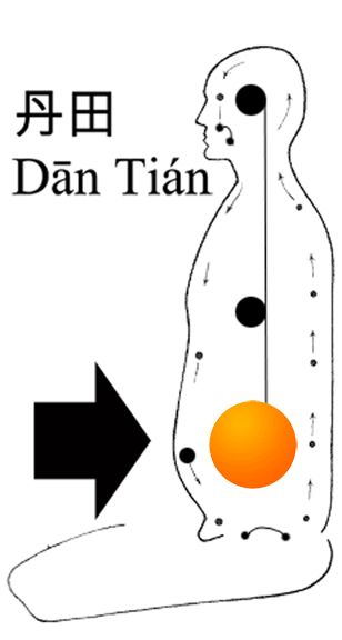 The Lower Dan Tian and the Microcosmic Orbit of chi circulation. - #TaiChi #Taijiquan