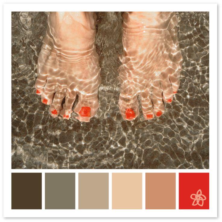 [coral feet] - Chicca Vischi for Jardin joli