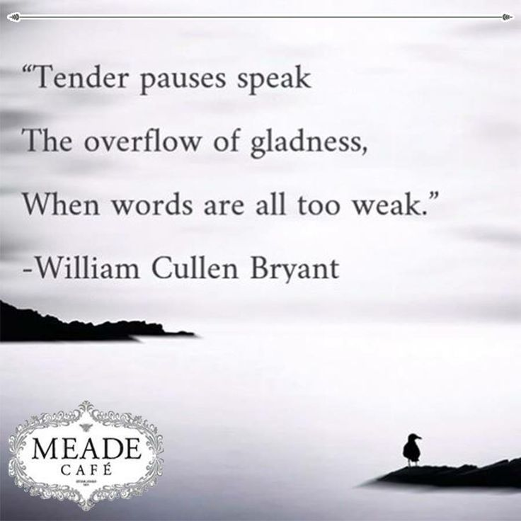 """ Tender pauses speak the overflow of gladness, when words are all too weak. "" - William Cullen Bryant. Meade Cafe wishes everyone a fantastic Sunday. #motivation #Sunday"
