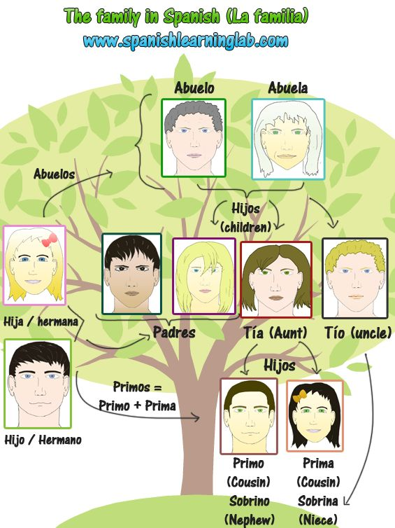 """Some common family members in Spanish. Do you know how to make sentences using these """"miembros de la familia""""?"""