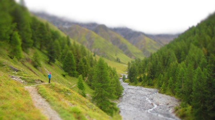 Zur Hirschbrunft in den Schweizerischen Nationalpark - matschbar