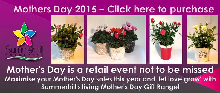 wholesale Mothers Day products Summerhill Nurseries www.summerhillnurseries.com.au