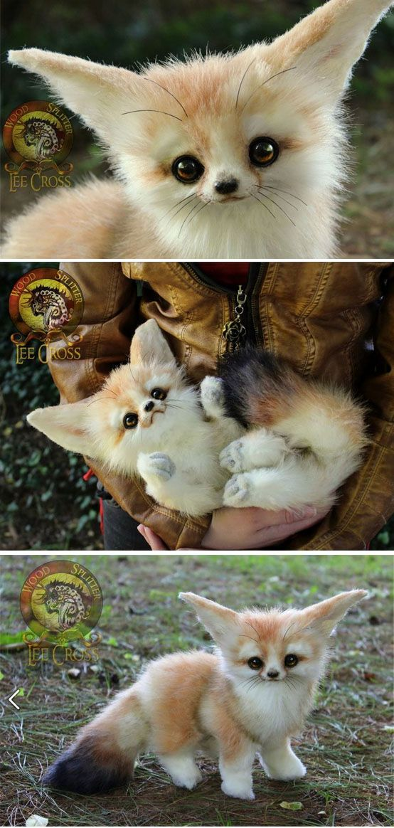 "Meet: ""Mumble!"" The Baby Fennec Fox! This 100% handmade, fully poseable ADORABLE Baby Fennec fox is a one of a kind original piece of artwork being offered up for bid! Synthetic hand dyed, fur. The only one in the world!"