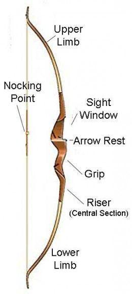 Beginner Recurve Bow