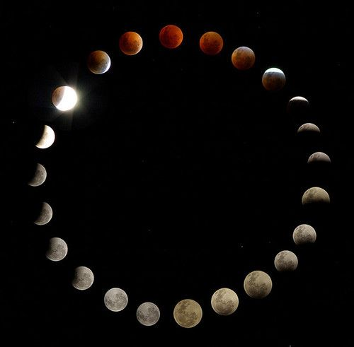 moon phases around the earth - photo #31