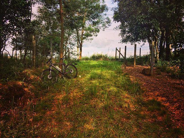 Bike garden! #Strava #Pedal #Love #bike #beautiful #nature #mtb #biker #photo #mtblife #shimano #serragaucha #bikelife #bikelife #ciclismo #ciclismo #bicicleta #pedalando #mtblife #happy #bruto #relive #praquempedala #pedallivre #mountainbike #peace #beautifulday #mtblove #doleitorpio #doleitorzh