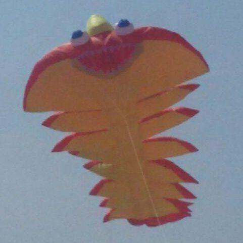 L'#aquilonata sulla spiaggia di #rimini #emiliaromagna #igersrimini #rimini #vivorimini #igersemiliaromagna #turismoer #igersitalia by hotelsouvenir